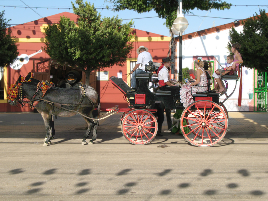 Feria de Malaga- Marbesol
