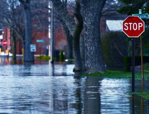 Cómo reclamar por lluvias y temporales los daños de mi coche